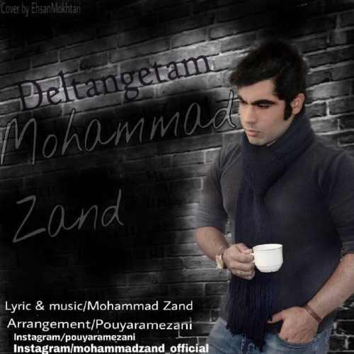 دانلود آهنگ جدید محمد زند بنام دلتنگتم